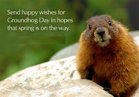 groundhog day morning 2nd feb 2016 happy groundhog day quotes images wishes