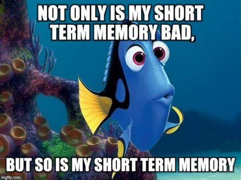 Dory Memes - 17 best ideas about finding nemo meme on pinterest wolf
