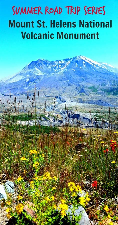 mount st helens other volcanoes picas nature s resilience at mount st helens national volcanic