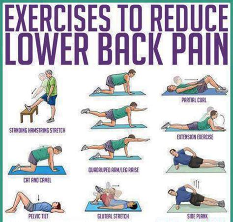 lower back exercises ease your lower back exercises ease your lower back