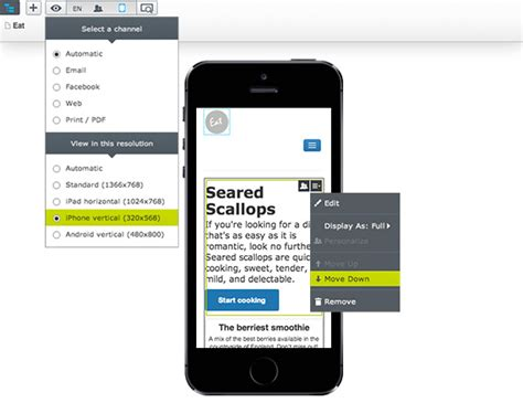 Mobile Content Management System Examples