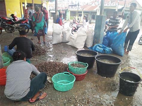 Kerang Di Pasar kerang batubara banyak diminati masyarakat luar portal berita ekbis medan sumatera utara