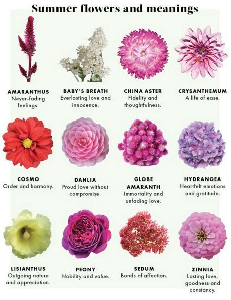 flower color meanings best 25 flowers and their meanings ideas on