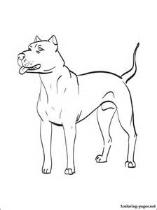 dogo argentino coloring coloring pages