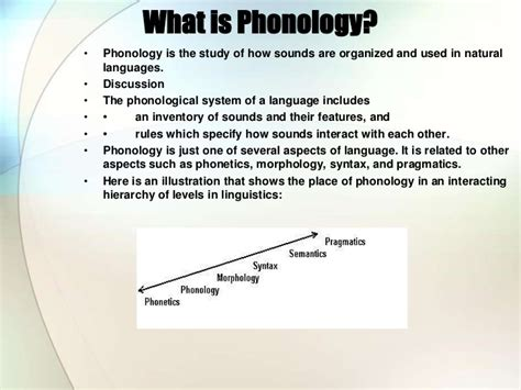 what does phonology mean basic concepts in phonetics