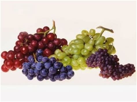 Anggur Merah Segar gambar buah anggur segar aku buah sehat