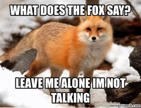 Fox Meme - what does the fox say meme memes