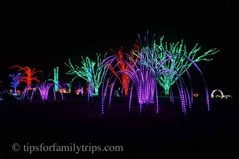 meadowlark botanical gardens meadowlark s winter walk of lights meadowlark gardens winter walk of lights is magical for