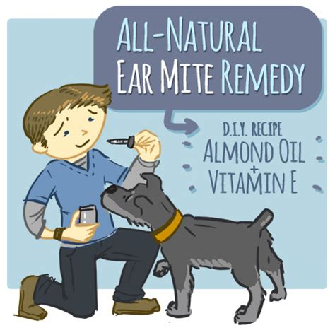 home remedy for ear mites using vitamin e and almond