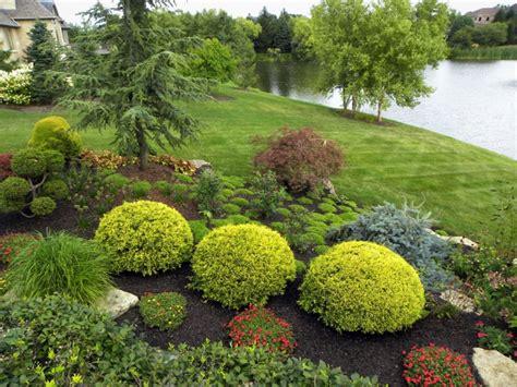 Landscape Shrubs Pictures 20 Shrub Garden Designs Ideas Design Trends Premium