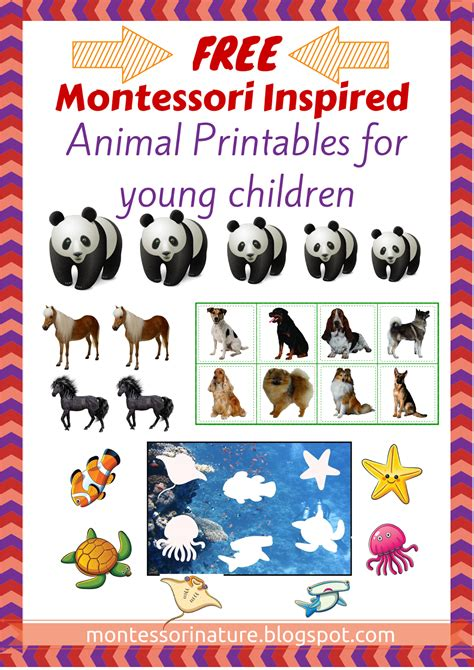 montessori printables animals montessori printables montessori nature
