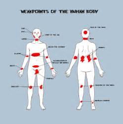 Weakpoints of the human body by leviathan187 on deviantart