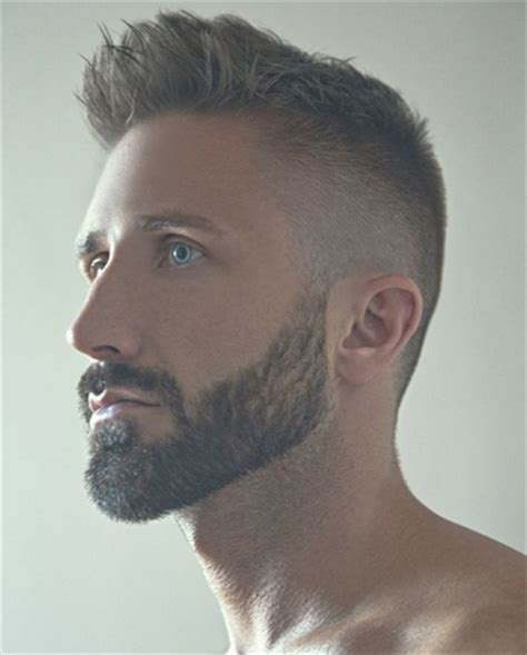 mens hairstyles : beard styles facial hair types and type
