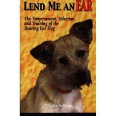 hearing aids for dogs 1000 images about loving communication on hearing aids shaming and