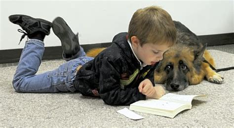 reading to dogs practice reading to shelter dogs at humane society books