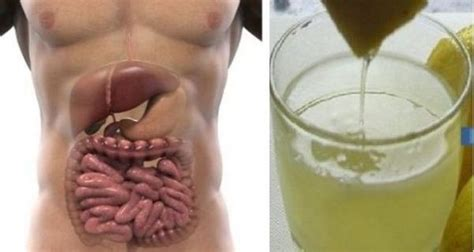 Does Detox Water Clean Your System by How To Do A 3 Day Complete Detox And Flush Excess