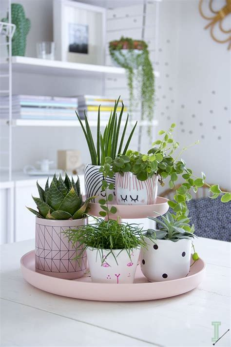 best 25 indoor plant decor ideas on plant