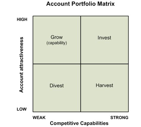 portfolio analysis template customer account portfolio matrix acuity consultants ltd