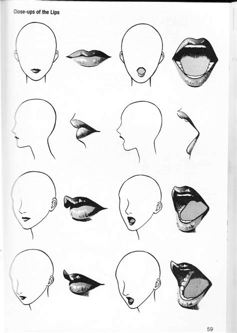 Drawing Mouths by 17 Best Ideas About Drawing On Drawing