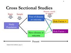 what is cross sectional research cross sectional studies disease frequency surveys