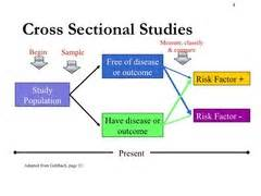cross sectional studies disease frequency surveys