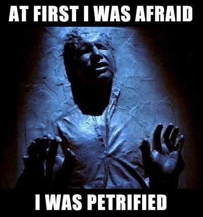 Funny Star Wars Meme - star wars memes jodi l milner author