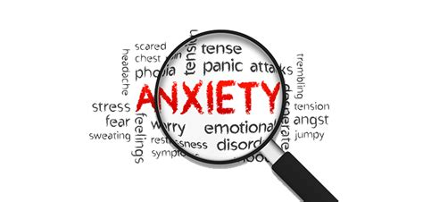 what can i give my for anxiety s anxiety here s something you can do now
