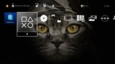 psp themes ps4 bandana cat 4k hiq theme on ps4 official playstation