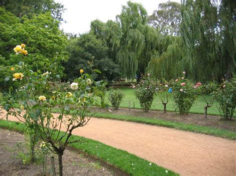 Castlemaine Botanical Gardens Castlemaine Photos Travel Accommodation Visitor Guide