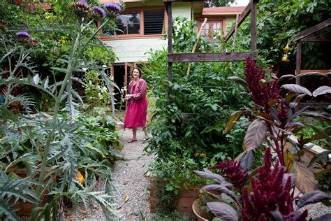 edible landscaping ideas for front yard sunset sunset