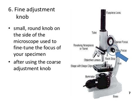Coarse Adjustment Knob Function b sc micro i btm u 1 microscopy and staining