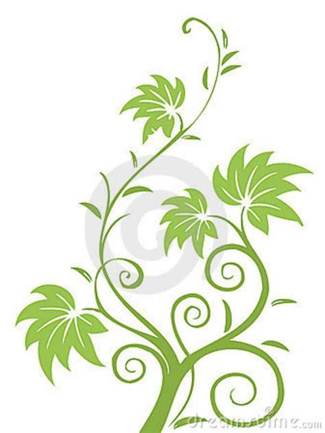 drawing vines pattern 71 best images about leaves and vines on pinterest red