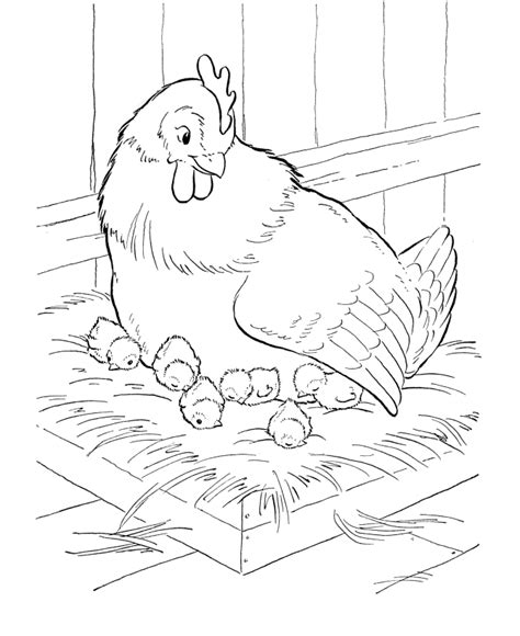 barn animals coloring pages coloring home