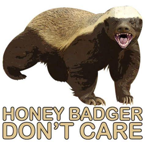 Honey Badger Meme - honey badger don t care honey badger know your meme