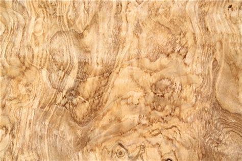 Burr Veneer olive ash burl veneer olive ash burr veneer olive ash wood veneers olive wood