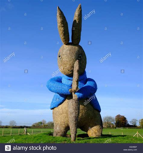 Ro N St Piyama Rabbit rabbit stock photos rabbit stock images alamy