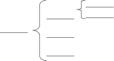 brace map template brace map