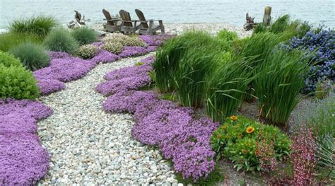 Coastal Landscaping Ideas 17 Best Images About Front Yard Landscape On Pinterest Gardens Trees And Garden Ideas