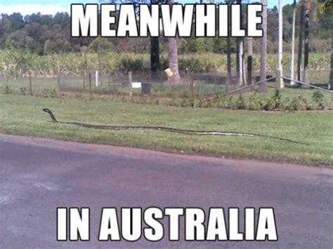 australia uncovered everything you need to know about