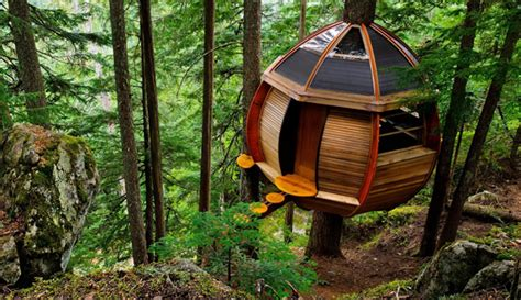 real treehouse tree houses