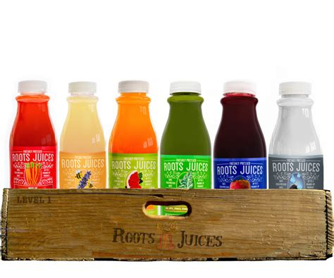 One Day Detox Cleanse by Level 1 Cleanse 1 Day Roots Pressed Juices