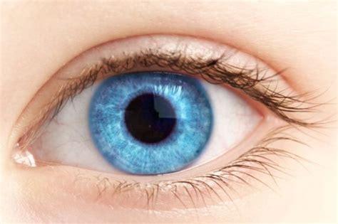 imagenes con ojos otra ventaja de tener ojos azules buenavida el pa 205 s