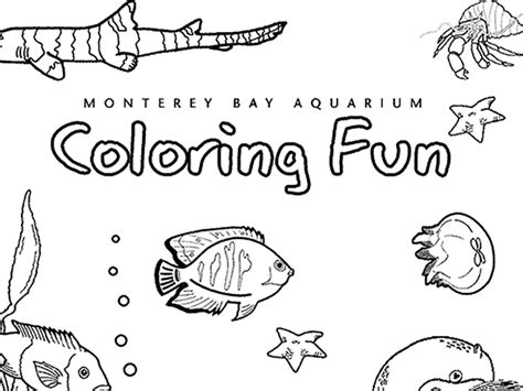 the aquarium colouring books sheshore coloring download sheshore coloring