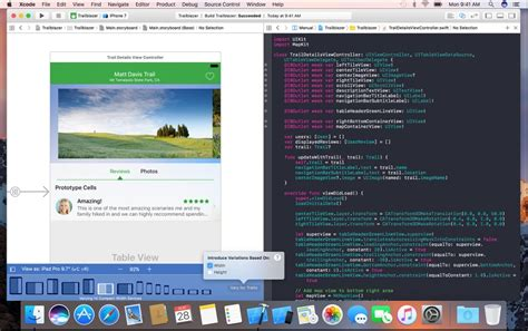 xcode responsive layout user experience design ux service design and usability