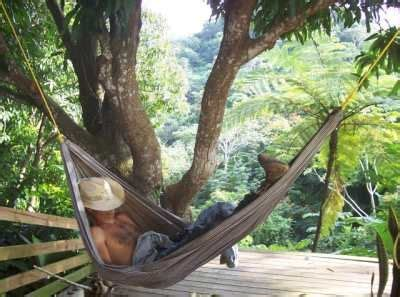 puerto rico bed and breakfast veg bed and breakfast in puerto rico travel pinterest
