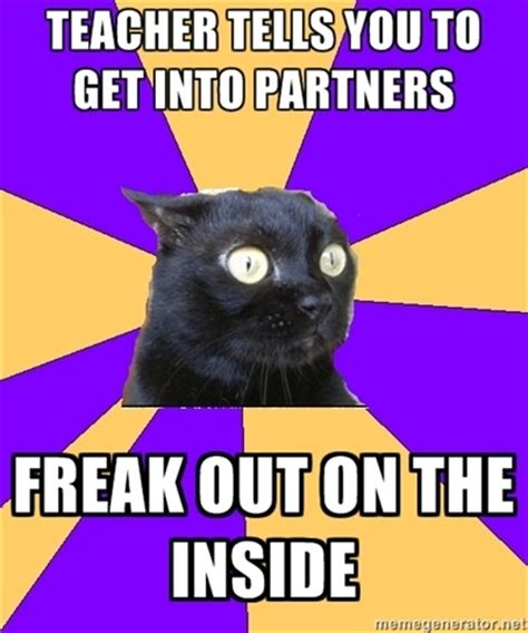 Anxiety Cat Meme - de 20 b 228 sta id 233 erna om anxiety cat p 229 pinterest roliga