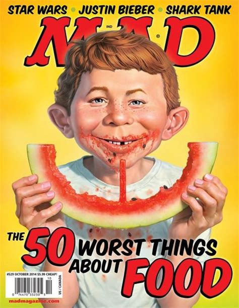 mad magazine what the editor of mad magazine worry