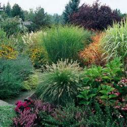 feel free landscaping with ornamental grasses