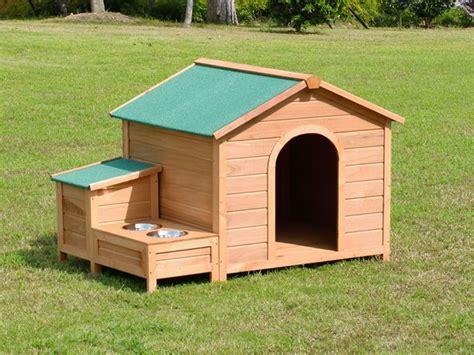 dog house auckland bingo wooden dog house