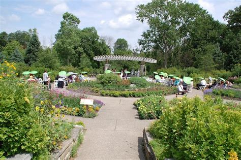 81 Best Images About Where I Work And What I Do On Botanical Gardens Arbor Mi